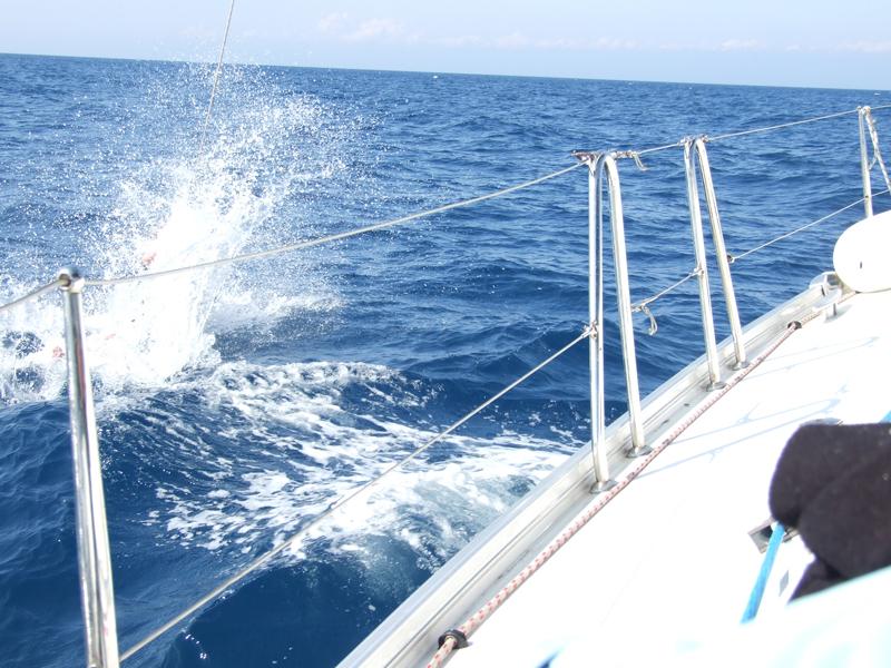 kursy żeglarstwa mazury